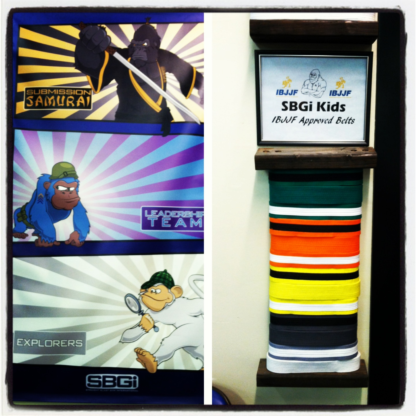 Kids Programs and belt ranks at SBGi